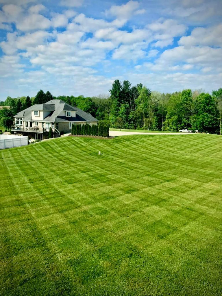 Nardo's Landscaping Solutions - Lawn care